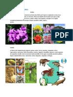 Flora y Fauna de Guatemala