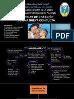 TÉCNICAS DE CREACIÓN DE UNA NUEVA CONDUCTA