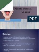 laboca-170121001033