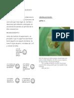 Trabajo Practico Corrosion (6)