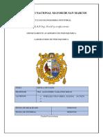 PRECION DE VAPOR LISTO PARA IMPRIM.docx