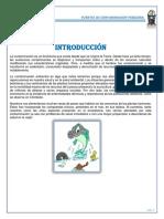Fuentes de Contaminacion Pesquera INFORME FINAL
