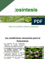 9- FOTOSINTESIS