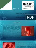 Bioética en El Aborto