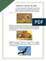 Animales Exóticos y Nativos Del Perú