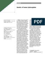 Genetics of human hyrocephalus.pdf