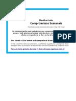 25295341 0 Planilha Compromisso
