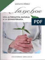Kalanchoe Una Alternativa a La Quimioterapea