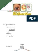Special Senses 1