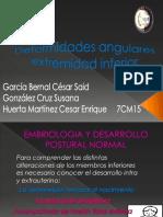 deformidadesangularescompleta-110927095207-phpapp02