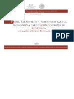 Ppi Promocion Supervision Ems 2018 19012018