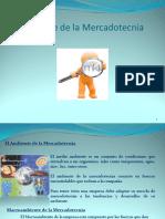 medioambientedelamercadotecnia (2)