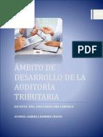 Ámbito de Desarrollo de La Auditoría Tributaria