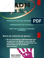 Presentacion feminicidio.