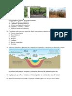 2ª-ATIVIDADE-ONLINE-PROVA-DO-DIA-26-05-6.pdf