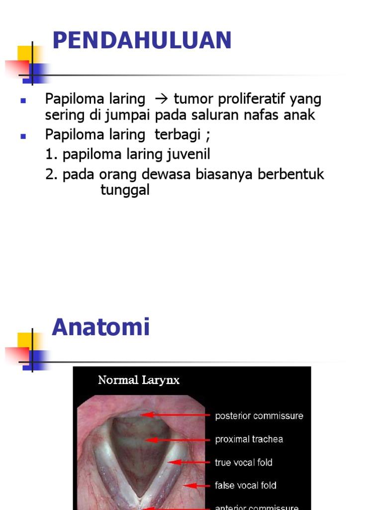 Condyloma a mirigyen. Condyloma – HPV - Dr. Nyirády Tamás szülész-nőgyógyász