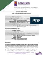 TdR-Lider-Técnicos-AICCA-MINAM-Peru.pdf