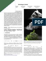 SchrodingersSmoke.pdf