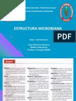 Clase 2 Estructura Microbiana