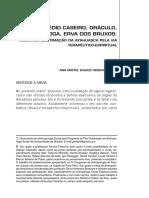 echazu_legimitacao_ayahuasca_2013.pdf