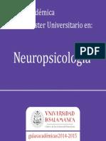 Master Neuropsicologia 2014-2015