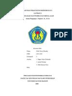 Latihan 1 Praktikum Mikrobiologi.docx