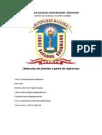 1er Informe de Tec de Los Alimentos - Obtencion de Almidon No Terminado222