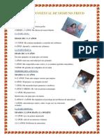ETAPA PSICOSEXUAL DE SIGMUND FREUD- RESUMEN DE DIANA ROQUE RENGIFO.docx