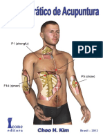 967606791Manual Prático de Acupuntura FRAGMENTOS (1).pdf