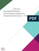 Manual Correccion Pa Lectura Diagnostico