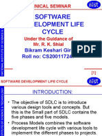 Software Dev Life Cycle