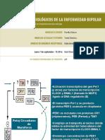 Nuevo modelo de Teorías Neurobiológicas Bipolaridad