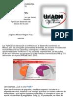 Presentacion Multimedia y Exposicion de Resultados