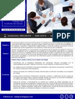 Elaboración y Referenciación de Los Papeles de Trabajo de Auditoría de Estado