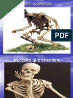 presentacion huesos-1