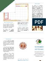 Triptico de economía de fichas.docx