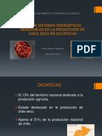 USO DE SISTEMAS ENERGÉTICOS RENOVABLES EN LA PRODUCCIÓN DE CHILE SECO EN ZACATECAS