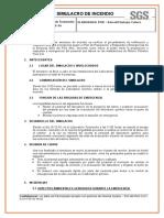 Informe de Simulacro Sgs d Oi p 35 01 Rv02 Diciembre
