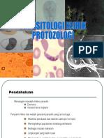 Protozo analis