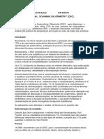 Relatorio DSC