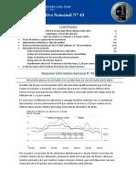 resumen-informativo-43-2017.pdf