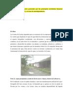 DIAGNOSTICO AMBIENTAL DE LA RN LOMAS DE LACHAY.docx
