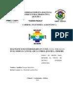 DIAGNOSTICO DE ENFERMEDADES EN CUYES (Cavia porcellus) EN EL MODULO DE LA UNIBOL,MUNICIPIO CHIMORE, DEPARTAMENTO DE COCHABAMBA