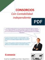 Consorcio Con Contabilidad Independiente