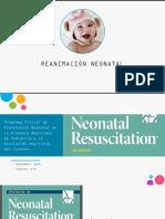 Lección 1 - Reanimación Neonatal
