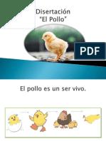 Disertación .pptx