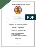 Análisis Microestructural Autoguardado Copia