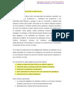 Ajustes-fisiológicos-de-la-gestación-modificado.pdf