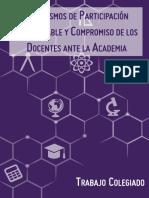 mecanismos_participacion_tc.pdf