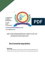 Unlicensed Environmental Degradation